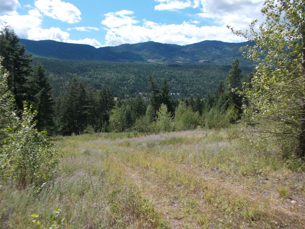 okanagan-property-for-sale